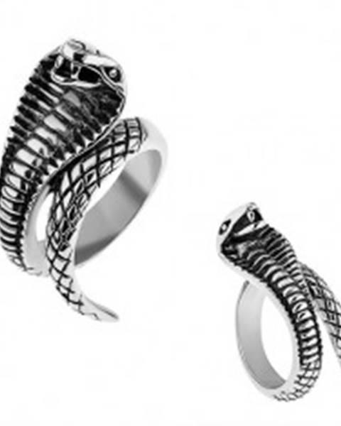 Oceľový prsteň striebornej farby, vypuklá patinovaná kobra T17.2 - Veľkosť: 57 mm