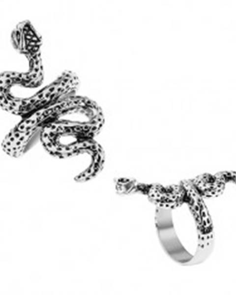 Patinovaný prsteň z ocele, strieborná farba, zvlnený had s bodkami - Veľkosť: 56 mm