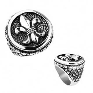 Prsteň z ocele, strieborná farba, patina, Fleur de Lis v kruhu, srdiečka T23.14 - Veľkosť: 56 mm