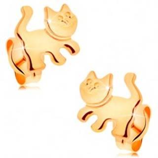 Náušnice zo žltého 14K zlata - lesklá mačička, puzetové zapínanie